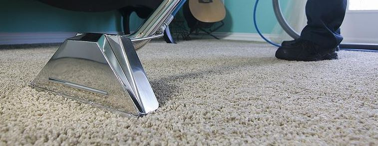 The Best Carpet Cleaning Companies in Missoula, MT